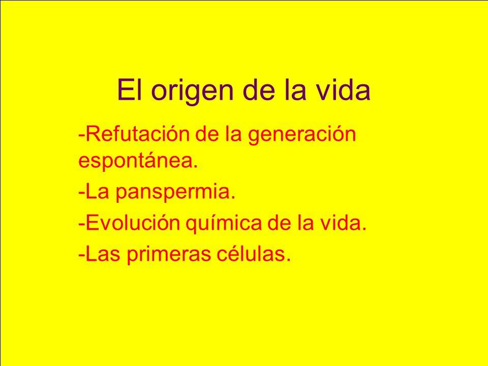 El origen de la vida -Refutación de la generación espontánea.