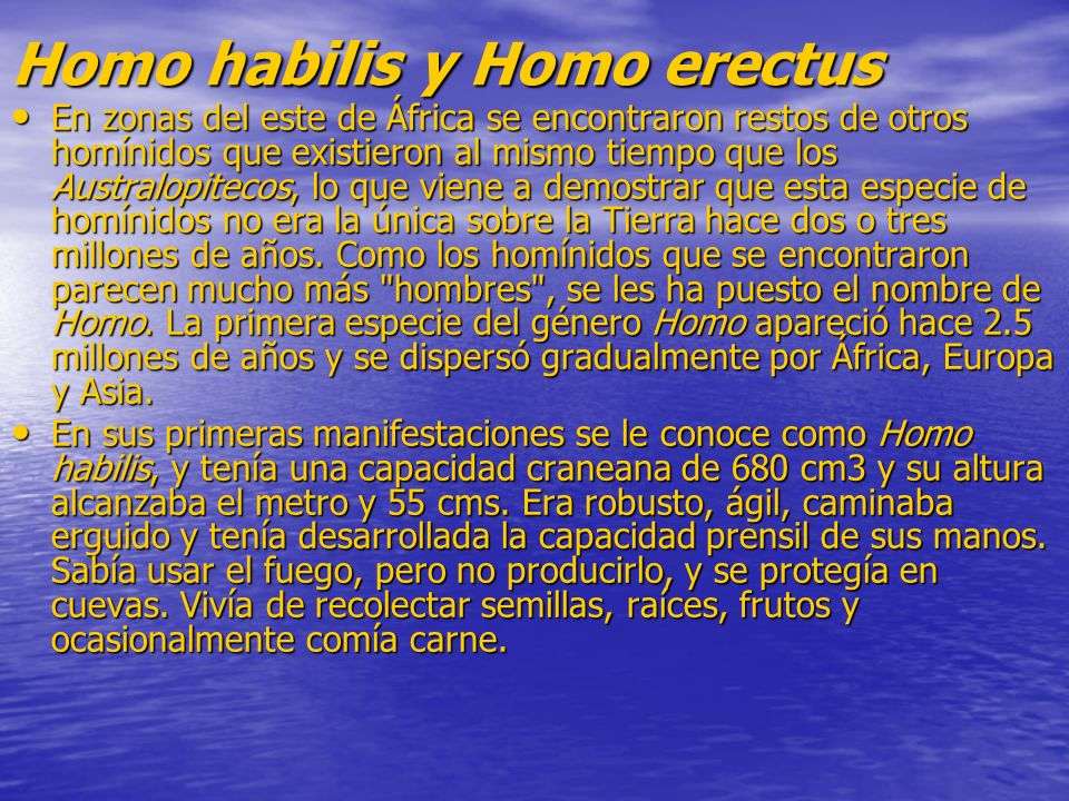 Homo habilis y Homo erectus