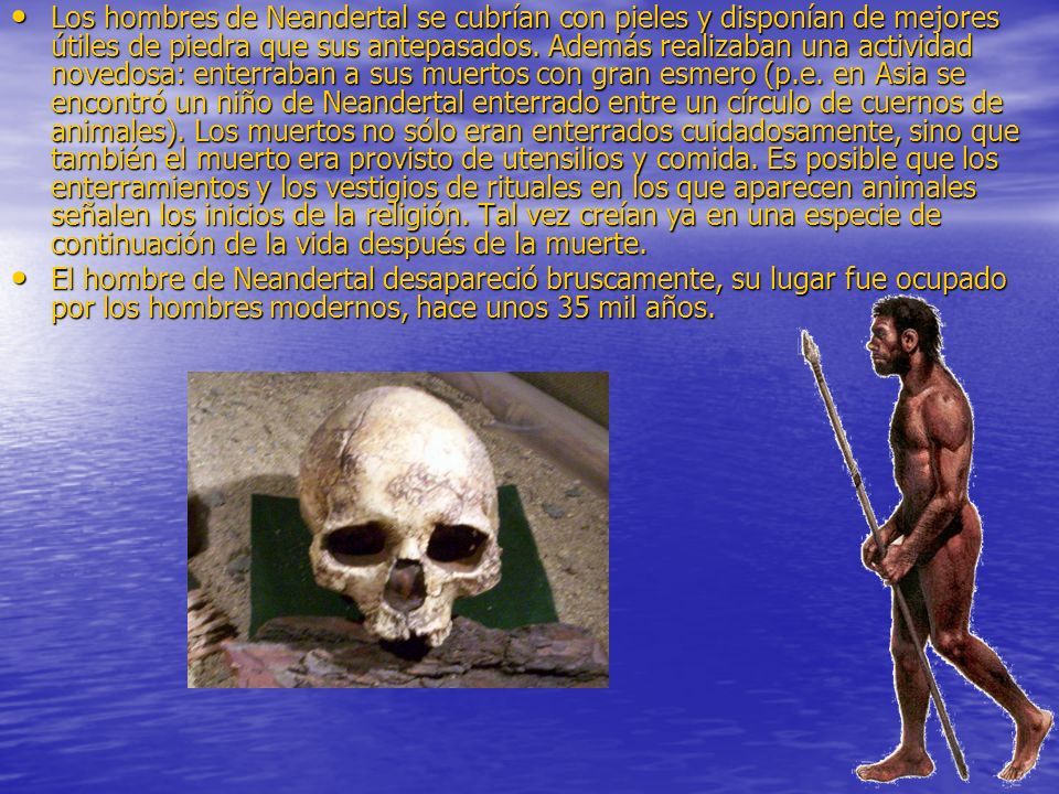 Los hombres de Neandertal se cubrían con pieles y disponían de mejores útiles de piedra que sus antepasados. Además realizaban una actividad novedosa: enterraban a sus muertos con gran esmero (p.e. en Asia se encontró un niño de Neandertal enterrado entre un círculo de cuernos de animales). Los muertos no sólo eran enterrados cuidadosamente, sino que también el muerto era provisto de utensilios y comida. Es posible que los enterramientos y los vestigios de rituales en los que aparecen animales señalen los inicios de la religión. Tal vez creían ya en una especie de continuación de la vida después de la muerte.