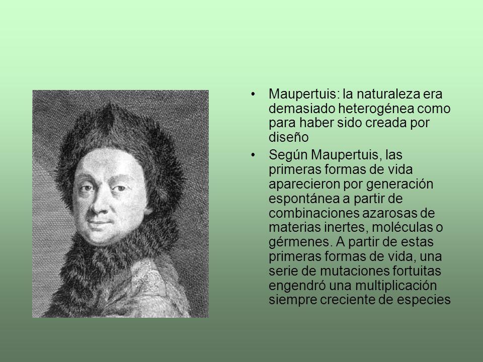 Maupertuis: la naturaleza era demasiado heterogénea como para haber sido creada por diseño
