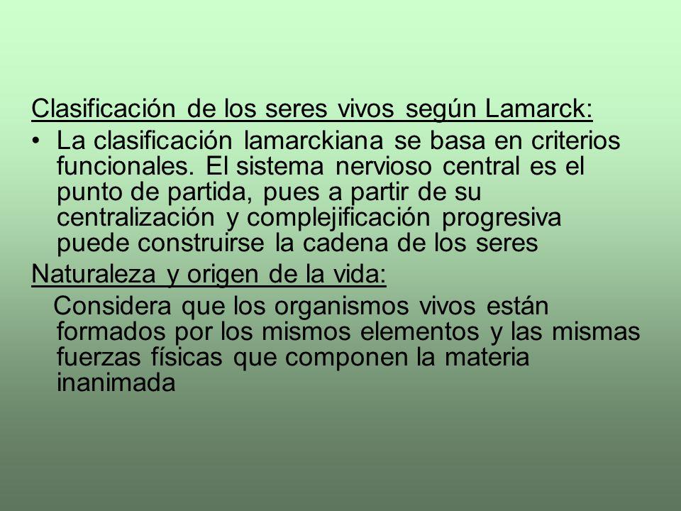 Clasificación de los seres vivos según Lamarck: