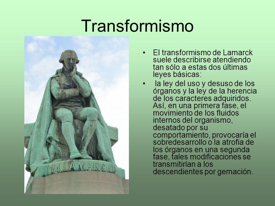Transformismo El transformismo de Lamarck suele describirse atendiendo tan sólo a estas dos últimas leyes básicas:
