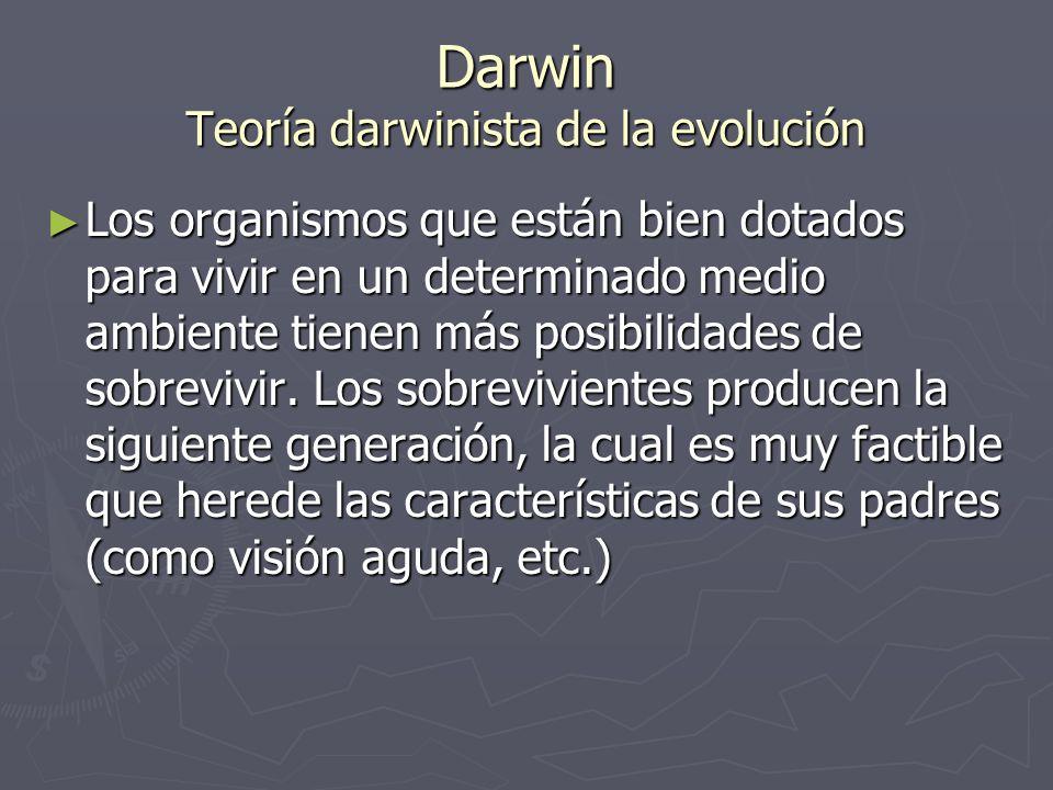 Darwin Teoría darwinista de la evolución