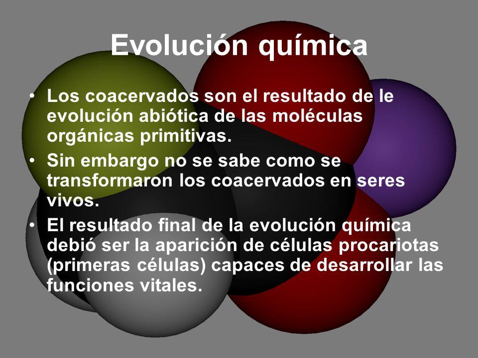 Evolución química Los coacervados son el resultado de le evolución abiótica de las moléculas orgánicas primitivas.