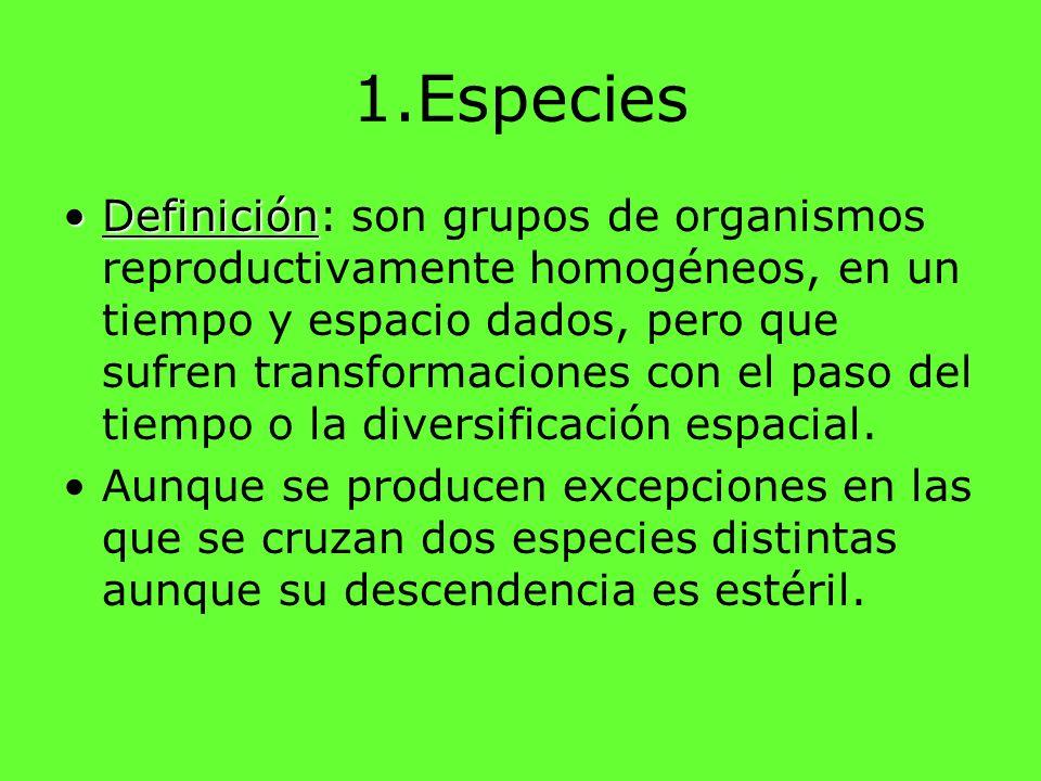 1.Especies