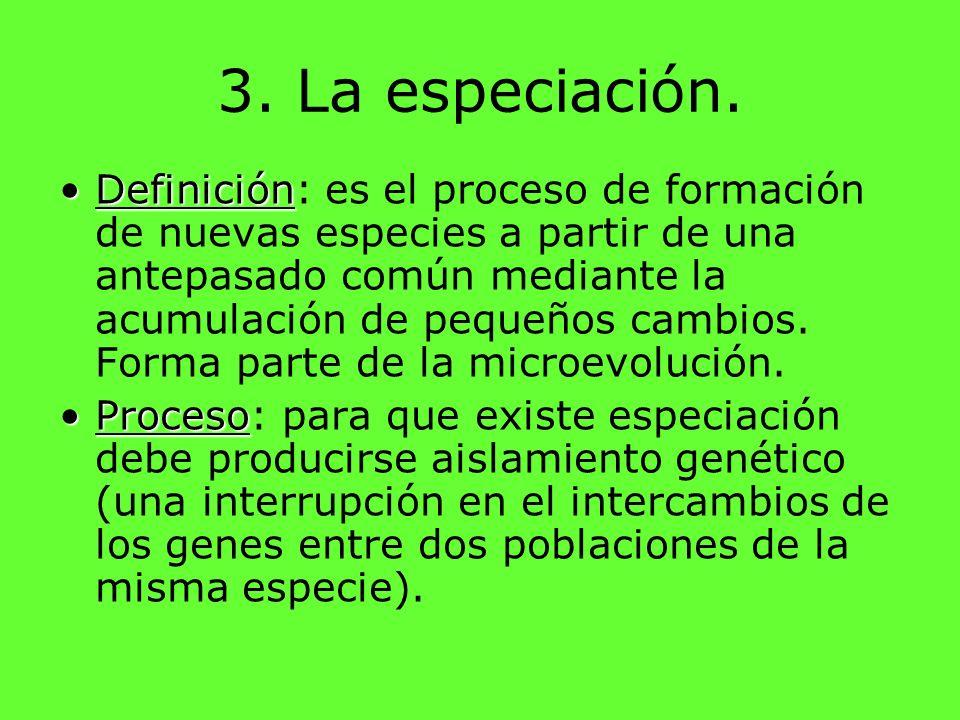 3. La especiación.