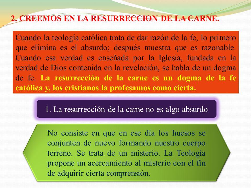 2. CREEMOS EN LA RESURRECCION DE LA CARNE.