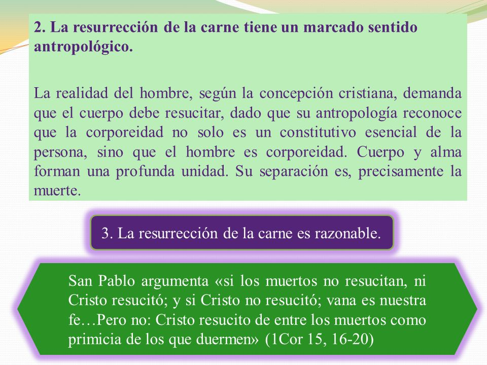 3. La resurrección de la carne es razonable.