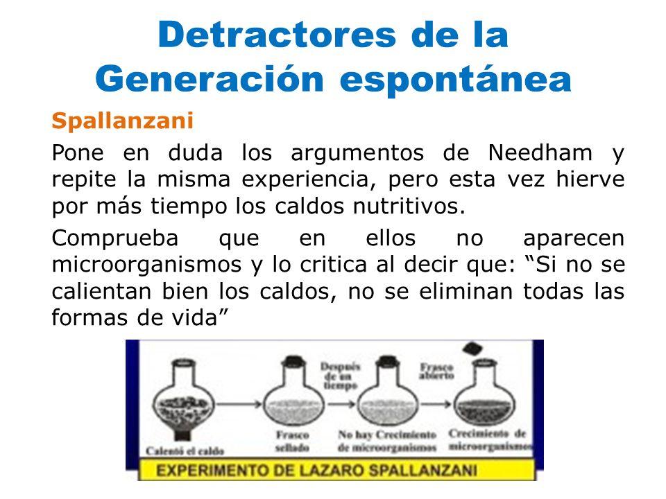 Detractores de la Generación espontánea