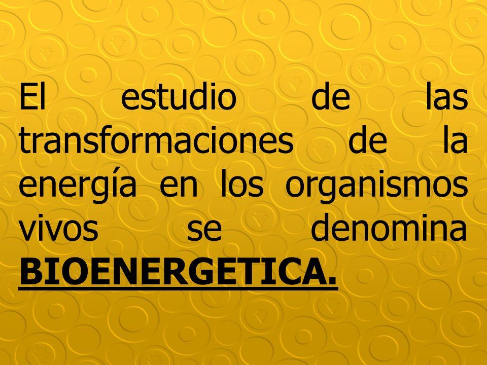 El estudio de las transformaciones de la energía en los organismos vivos se denomina BIOENERGETICA.