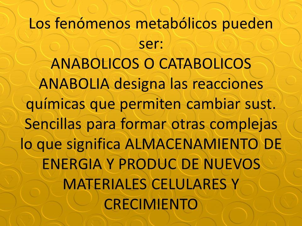 Los fenómenos metabólicos pueden ser: ANABOLICOS O CATABOLICOS ANABOLIA designa las reacciones químicas que permiten cambiar sust.