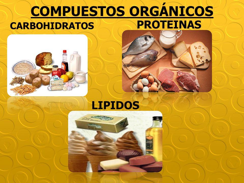 COMPUESTOS ORGÁNICOS PROTEINAS CARBOHIDRATOS LIPIDOS