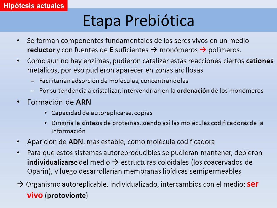 Etapa Prebiótica Formación de ARN