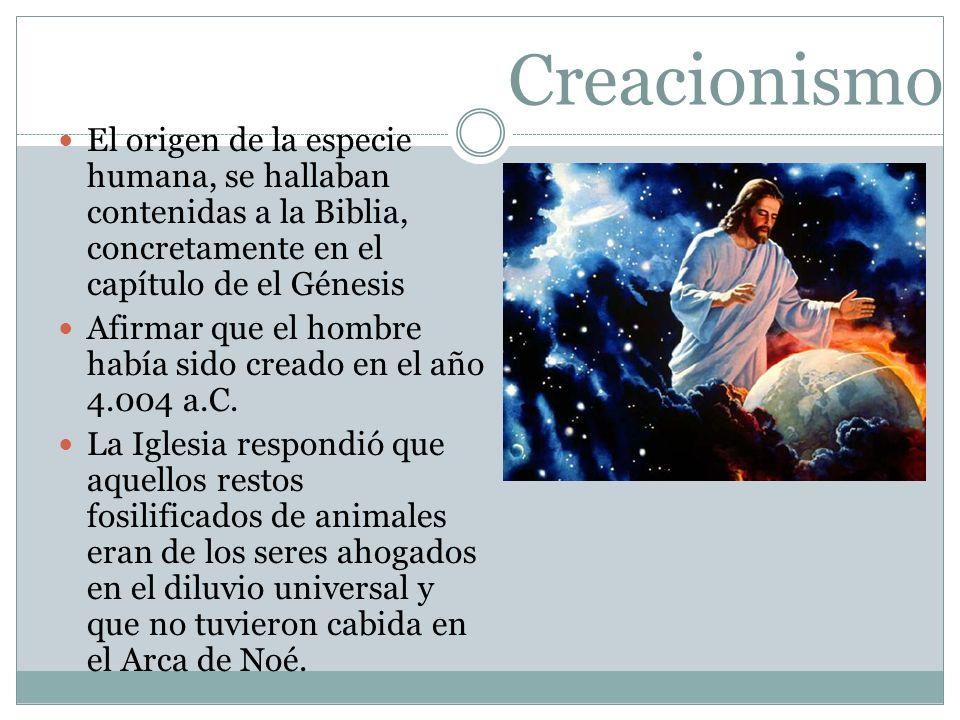 Creacionismo El origen de la especie humana, se hallaban contenidas a la Biblia, concretamente en el capítulo de el Génesis.