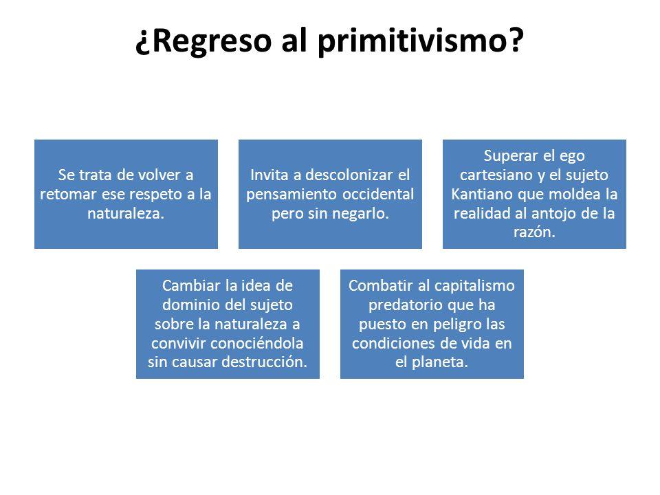 ¿Regreso al primitivismo