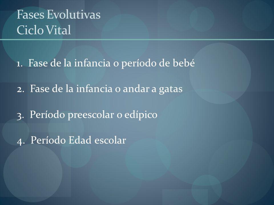 Fases Evolutivas Ciclo Vital