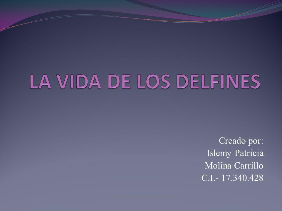 Creado por: Islemy Patricia Molina Carrillo C.I.- 17.340.428