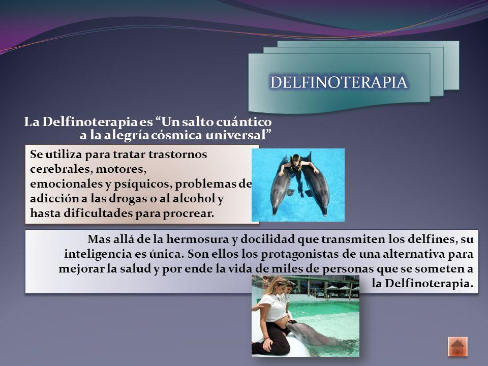 DELFINOTERAPIA La Delfinoterapia es Un salto cuántico a la alegría cósmica universal