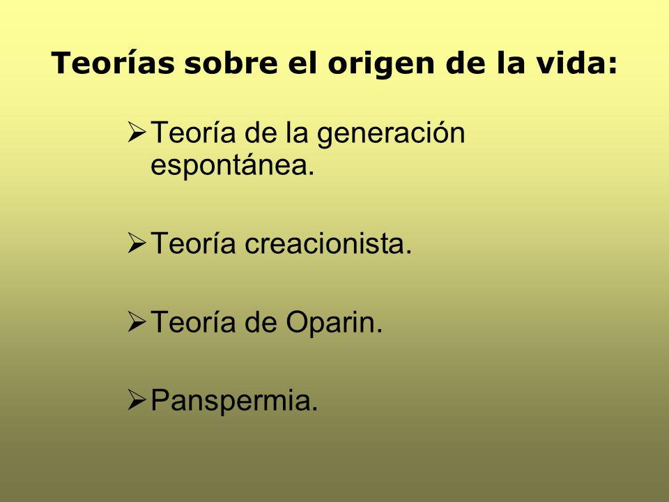 Teorías sobre el origen de la vida: