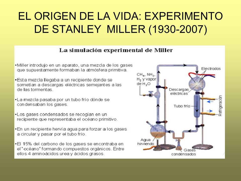EL ORIGEN DE LA VIDA: EXPERIMENTO DE STANLEY MILLER (1930-2007)