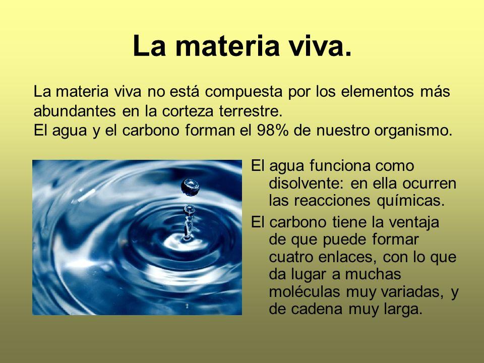 La materia viva. La materia viva no está compuesta por los elementos más abundantes en la corteza terrestre.