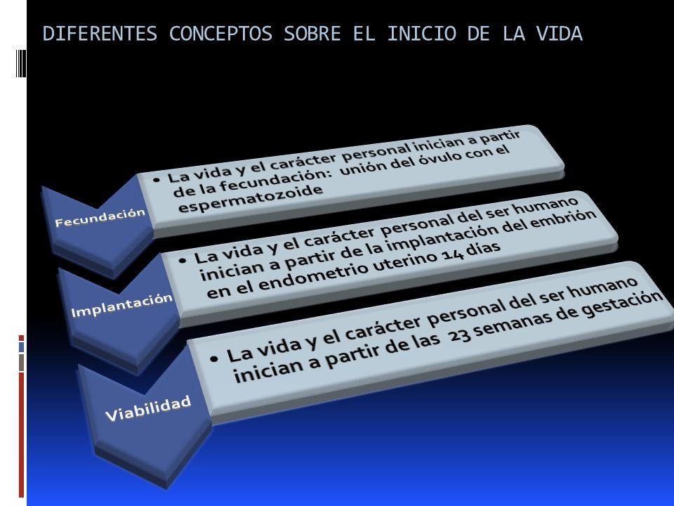 DIFERENTES CONCEPTOS SOBRE EL INICIO DE LA VIDA