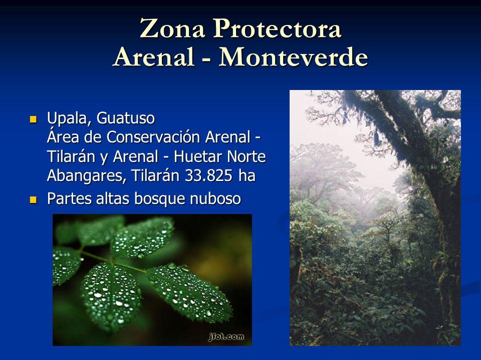 Zona Protectora Arenal - Monteverde