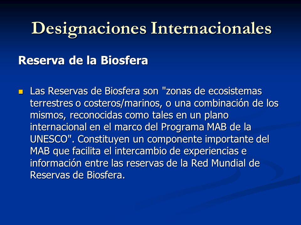 Designaciones Internacionales