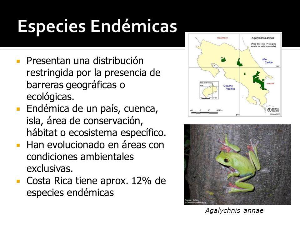Especies Endémicas Presentan una distribución restringida por la presencia de barreras geográficas o ecológicas.