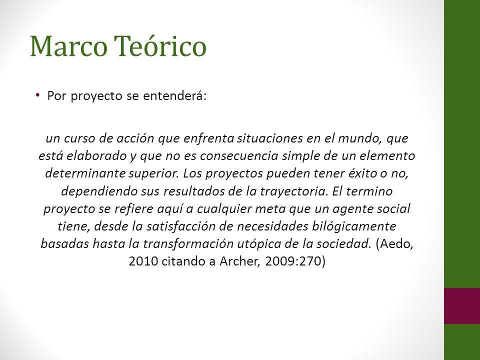 Marco Teórico Por proyecto se entenderá:
