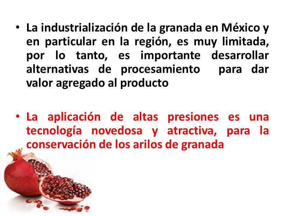 La industrialización de la granada en México y en particular en la región, es muy limitada, por lo tanto, es importante desarrollar alternativas de procesamiento para dar valor agregado al producto