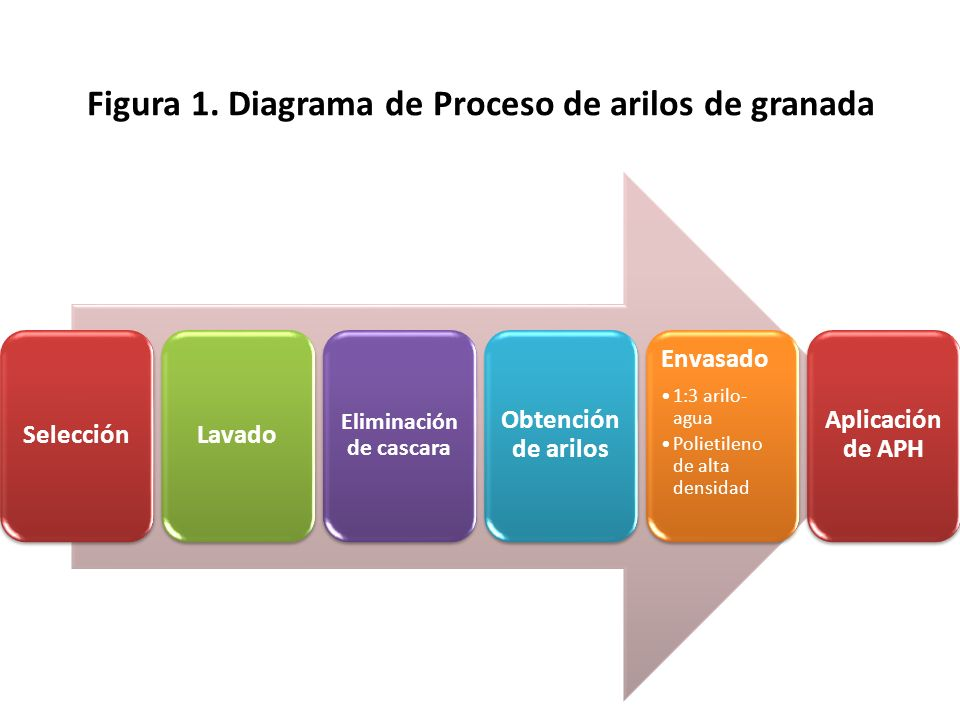 Figura 1. Diagrama de Proceso de arilos de granada