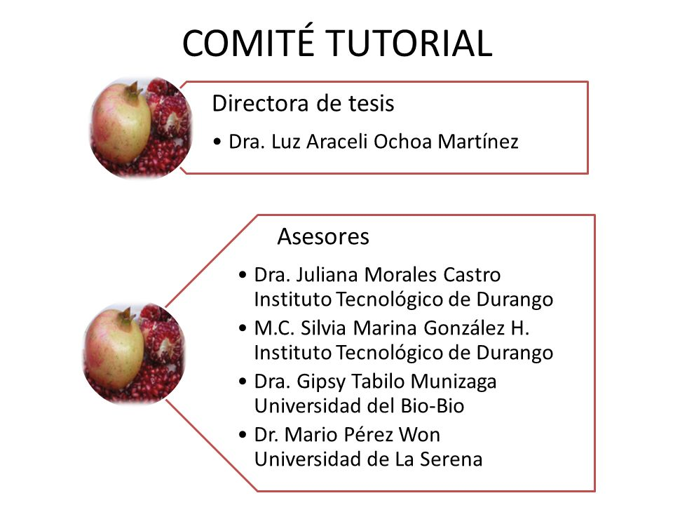 COMITÉ TUTORIAL Directora de tesis Asesores