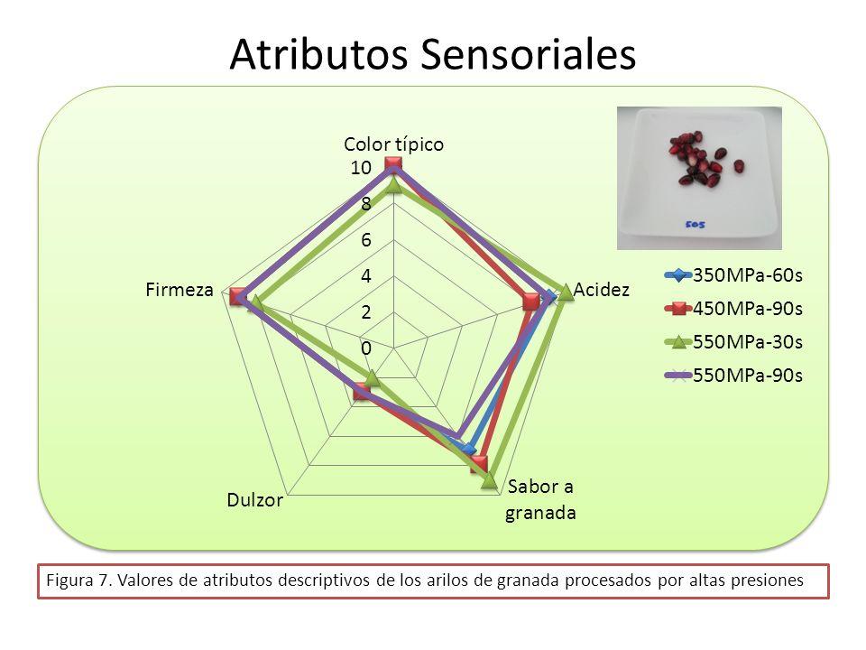 Atributos Sensoriales