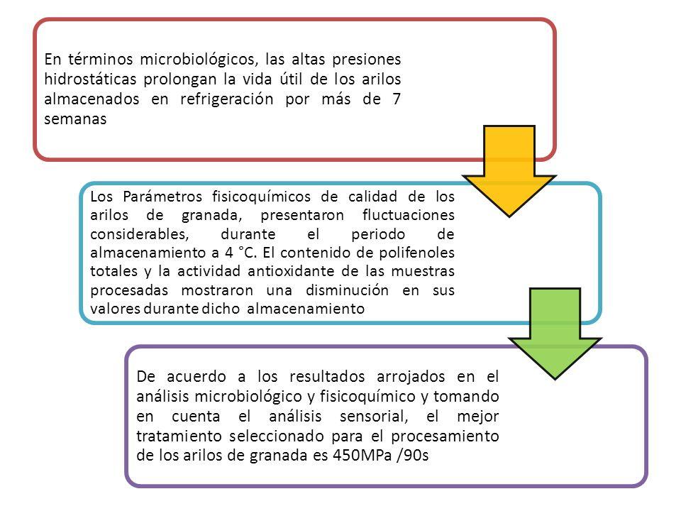 En términos microbiológicos, las altas presiones hidrostáticas prolongan la vida útil de los arilos almacenados en refrigeración por más de 7 semanas