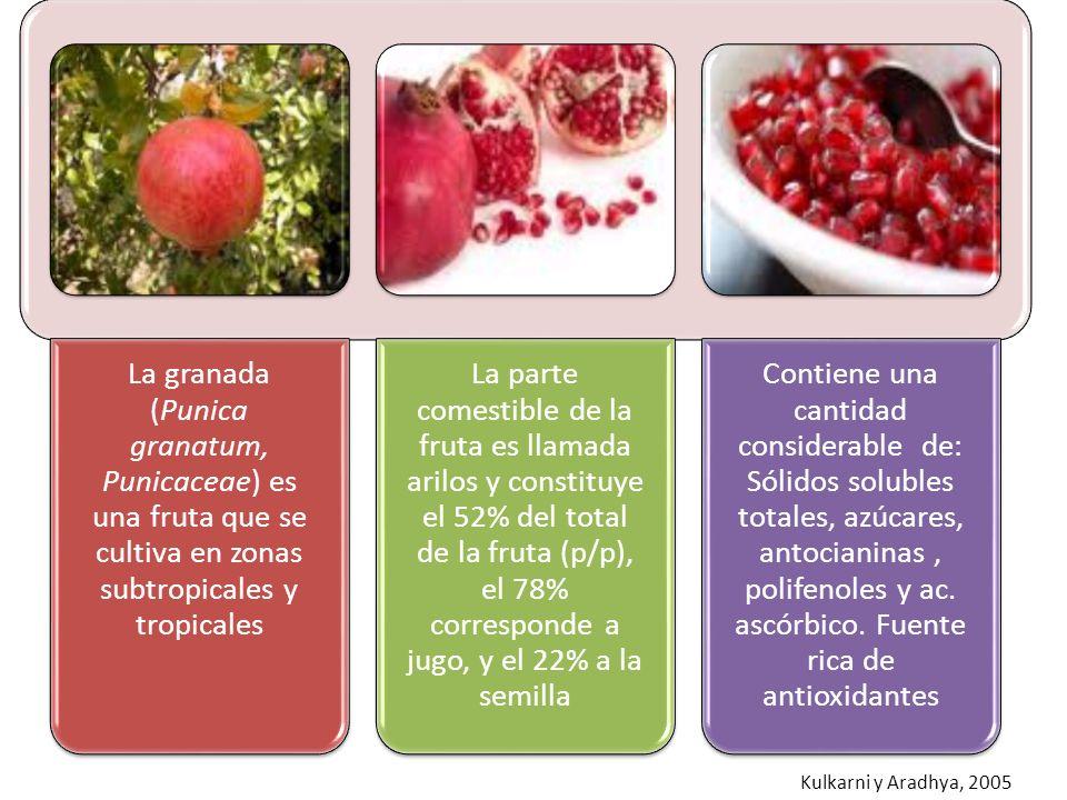 La granada (Punica granatum, Punicaceae) es una fruta que se cultiva en zonas subtropicales y tropicales