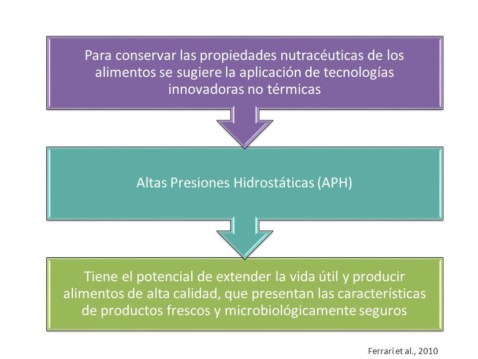 Altas Presiones Hidrostáticas (APH)