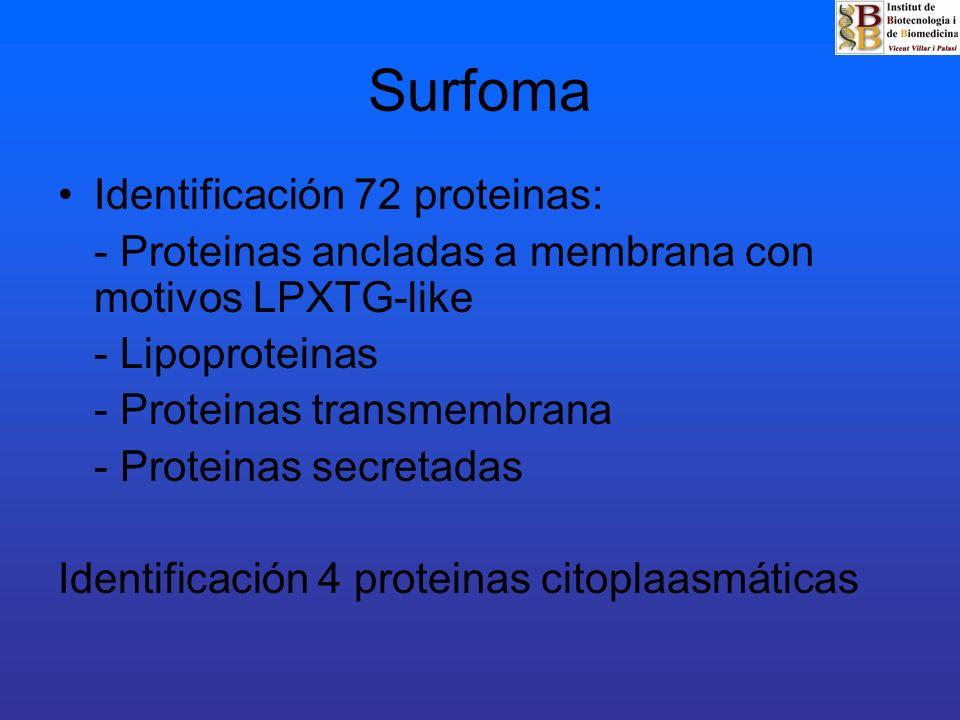 Surfoma Identificación 72 proteinas: