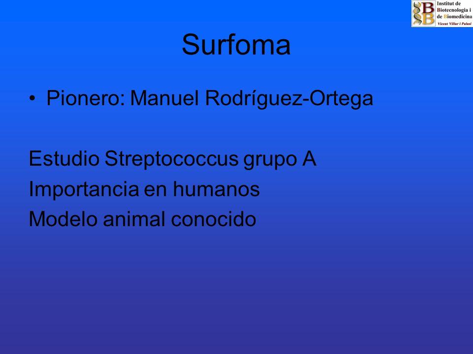 Surfoma Pionero: Manuel Rodríguez-Ortega Estudio Streptococcus grupo A
