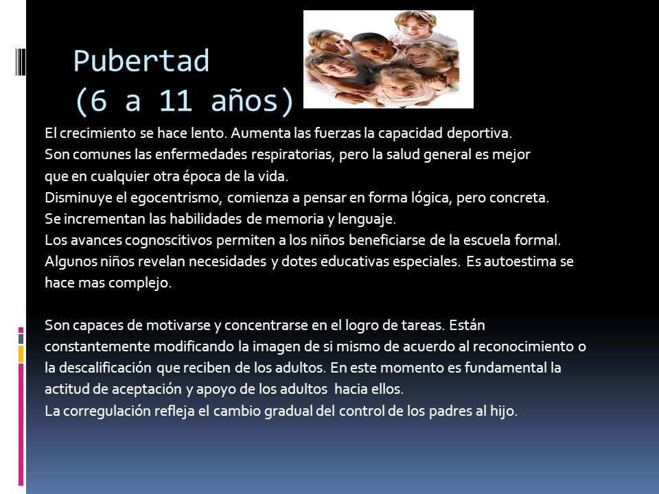 Pubertad (6 a 11 años)