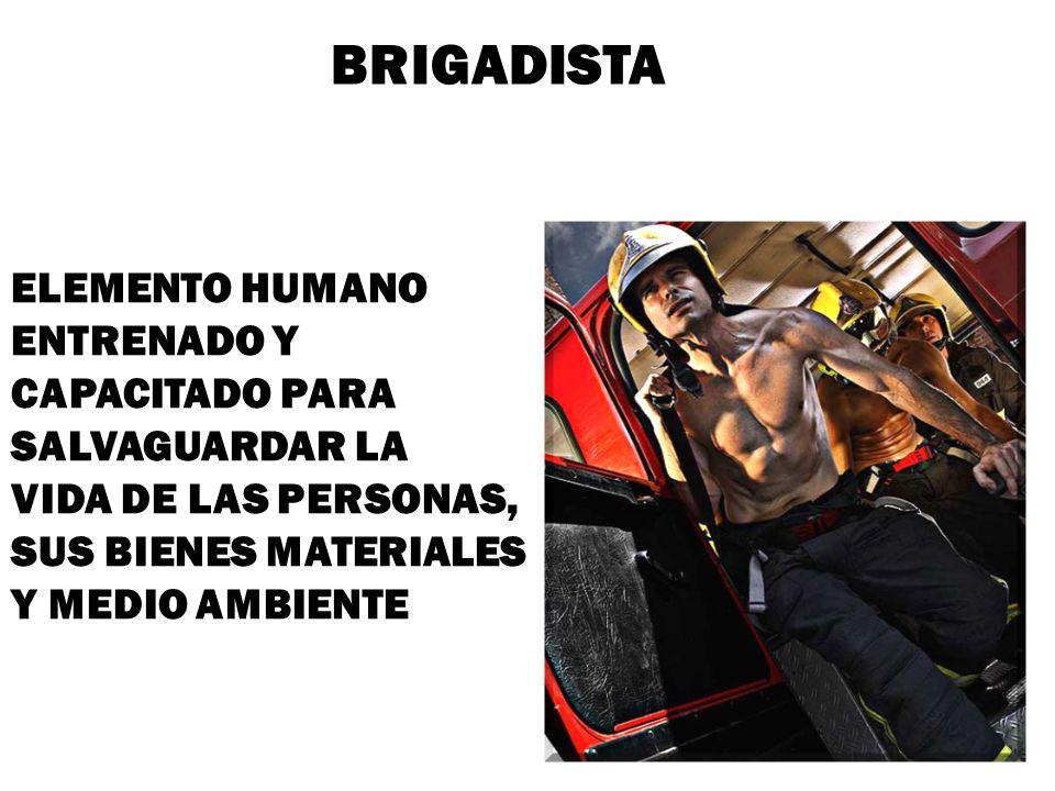 BRIGADISTA ELEMENTO HUMANO ENTRENADO Y CAPACITADO PARA SALVAGUARDAR LA