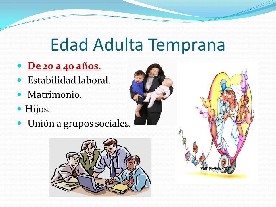 Edad Adulta Temprana De 20 a 40 años. Estabilidad laboral. Matrimonio.