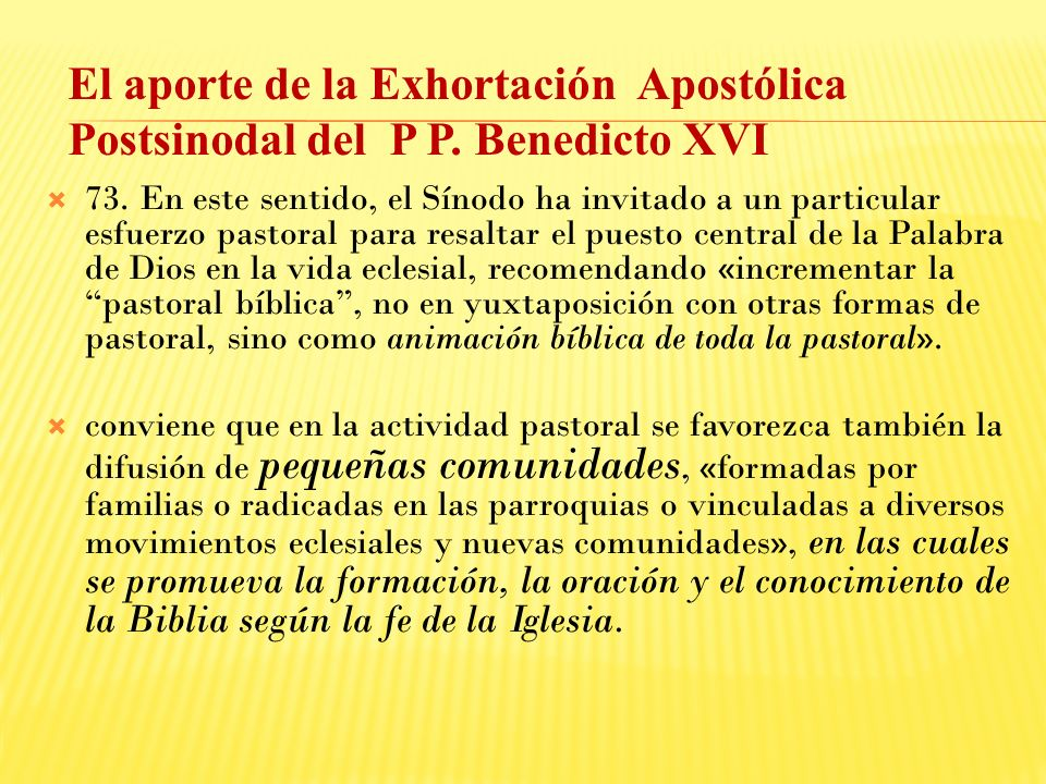 El aporte de la Exhortación Apostólica Postsinodal del P P