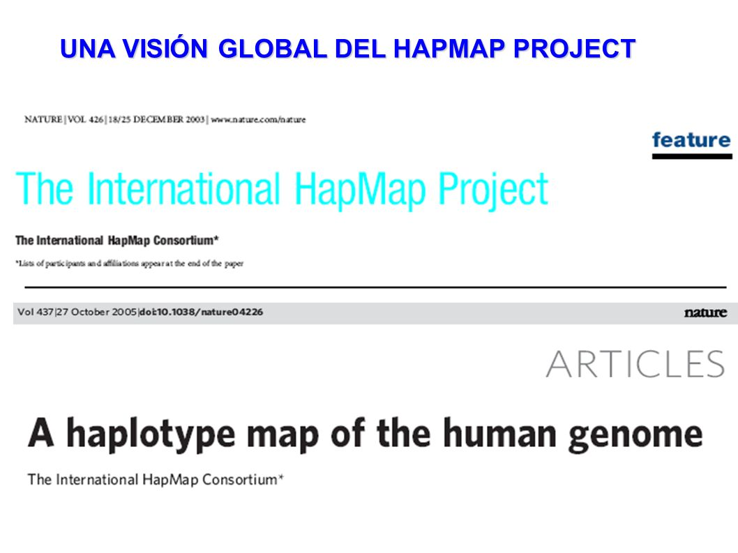 UNA VISIÓN GLOBAL DEL HAPMAP PROJECT