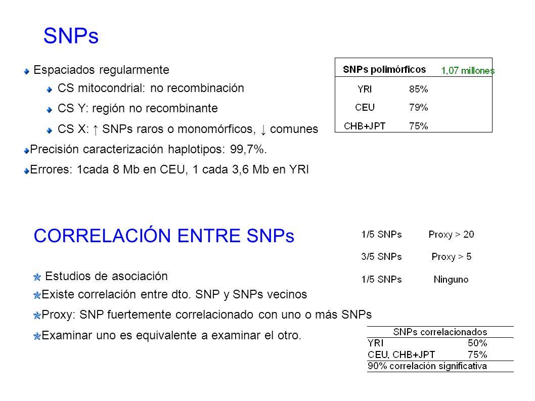 SNPs CORRELACIÓN ENTRE SNPs Espaciados regularmente