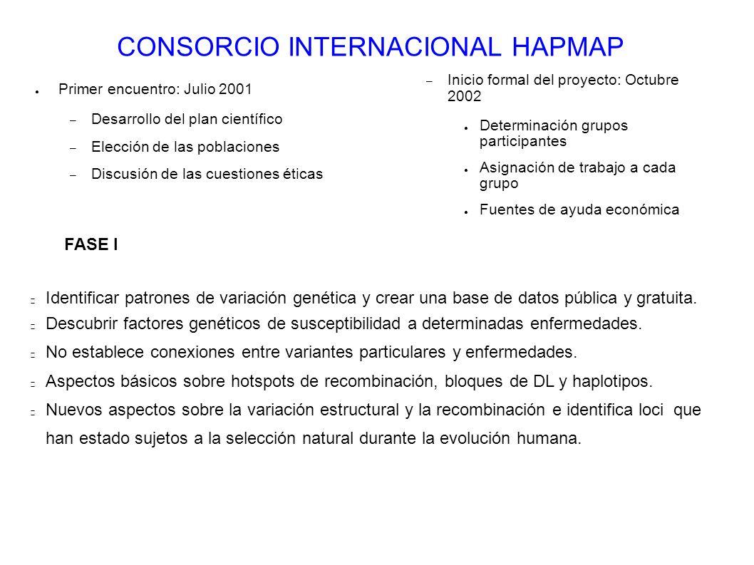 CONSORCIO INTERNACIONAL HAPMAP