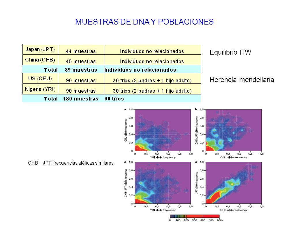 MUESTRAS DE DNA Y POBLACIONES