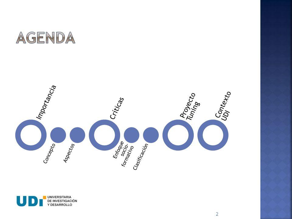 AGENDA Importancia Proyecto Tuning Contexto UDI Críticas Concepto