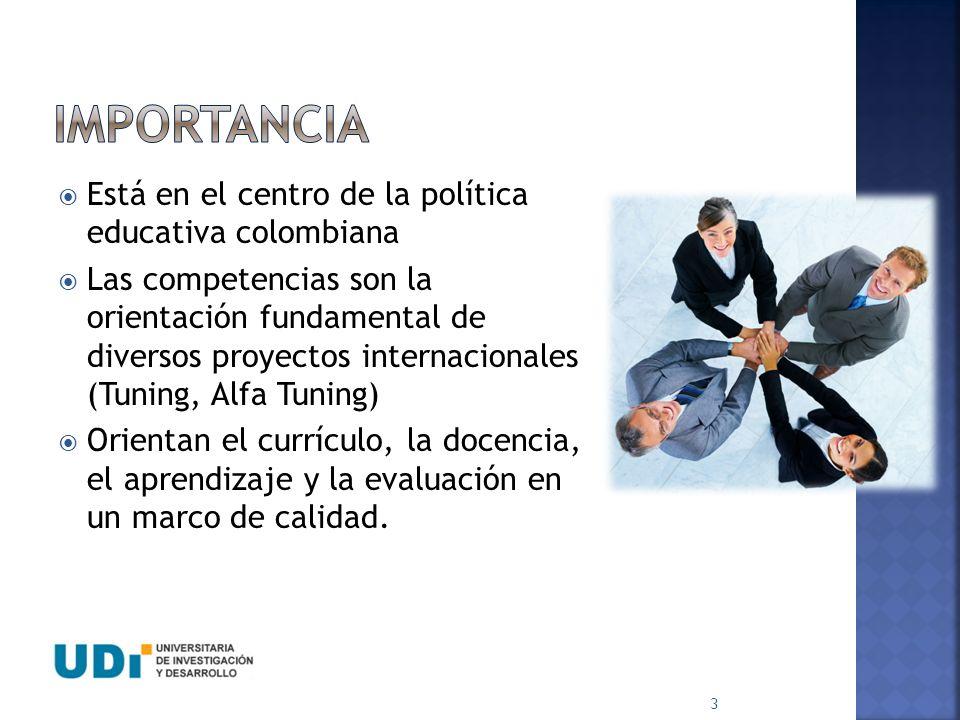 IMPORTANCIA Está en el centro de la política educativa colombiana