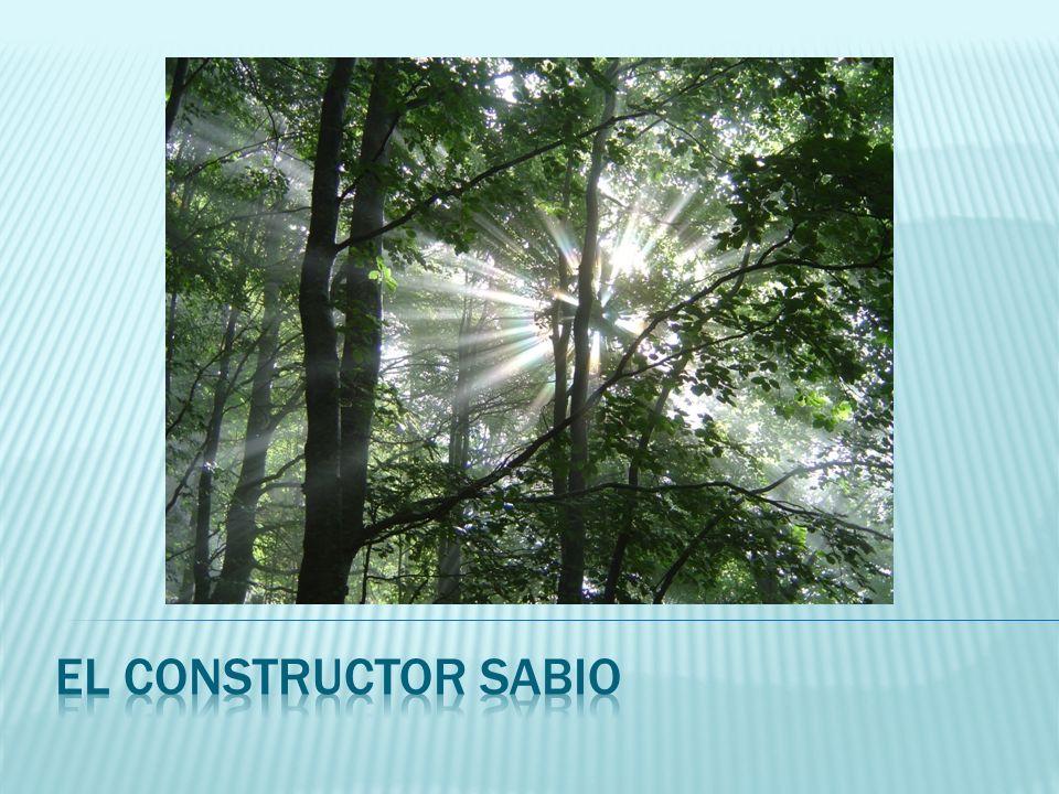 El constructor sabio